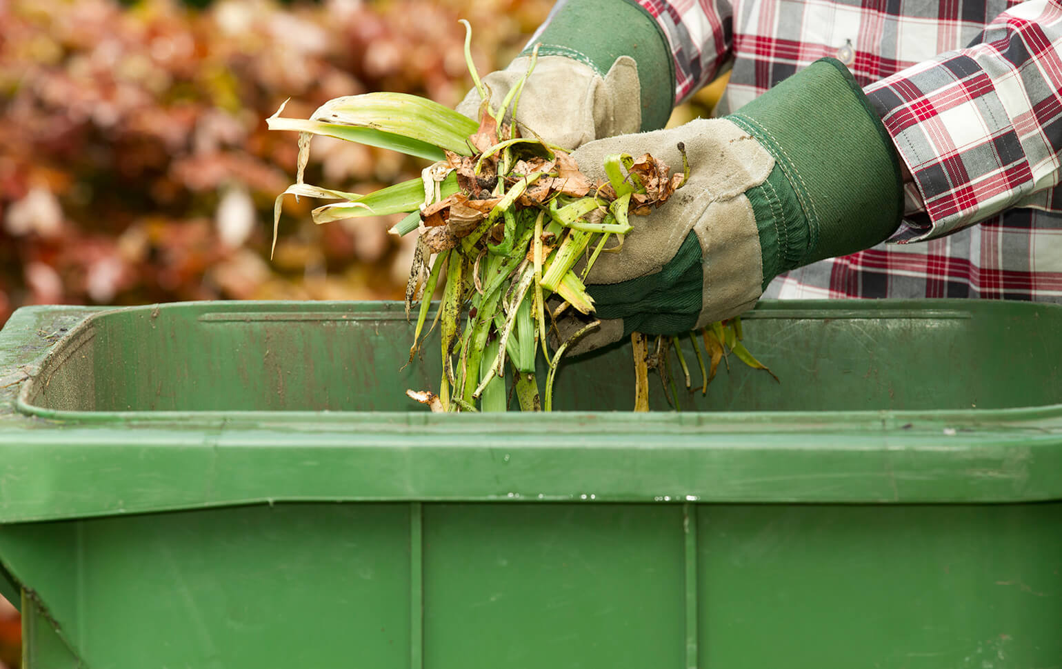 Don't mistake compost for manure.